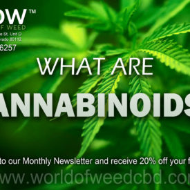 What Are Cannabinoids? World of Weed CBD Pie Graph – CBD Isolates